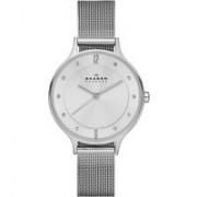 Skagen Horloge Albuen SKW2149