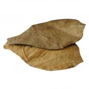 Dennerle Nano hojas de almendro - 12 unidades