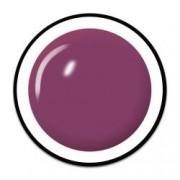 Gel UV Color Unghii Royal Femme Culoare Blackberry Juice Geluri Profesionale Unghii