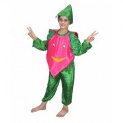 Kaku Fancy Dresses Onion Vegetables Costume -Magenta Green for Boys Girls