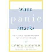 When Panic Attacks: The New, Drug-Free Anxiety Therapy That Can Change Your Life, Paperback