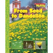 From Seed to Dandelion, Paperback