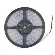 efectoled.com Tira LED 12V DC SMD5050 120LED/m 5m IP67 Blanco Neutro 4000K-4500K