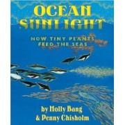 Ocean Sunlight: How Tiny Plants Feed the Seas, Hardcover