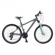 Bicicleta Benotto XC-7000 Alum R26 24V Shi Tourney Fno V Plata Talla:S
