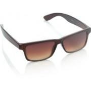 Allen Solly Rectangular Sunglasses(Brown)