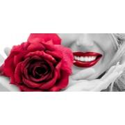 Tablou modern trandafir cu buze rosii
