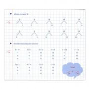 Deltas Mijn oefenschrift - rekenen (tweede trimester)