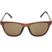 Pepe Jeans Clubmaster Sunglasses(Brown)