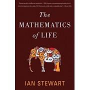 The Mathematics of Life, Paperback/Ian Stewart
