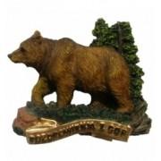 Niedźwiedź brązowy z gór
