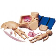 simulatore modello ginocologico del parto - manipolazioni uterine e te