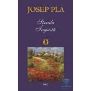 Strada ingusta - Josep Pla
