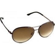 Escada Aviator Sunglasses(Brown)