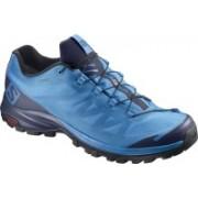 Salomon OUTpath GTX® Waterproof Hiking & Trekking Shoes For Men(Blue)