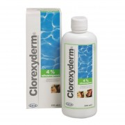 CLOREXYDERM SAMPON 4 %, 250ml