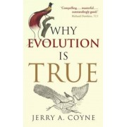Why Evolution is True, Paperback