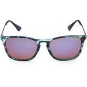 Pepe Jeans Wayfarer Sunglasses(Blue)