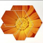 Tablouri 4 piese - Detaliu floral supradimensionat