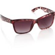 Animal Wayfarer Sunglasses(Violet)