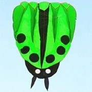 KENGEL® GREEN Simple large and easy to fly the soft ladybug of the kite flying 56*67 INCH (free bag)