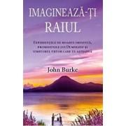 Imagineaza-ti raiul: Experientele de moarte iminenta, promisiunile lui Dumnezeu si uimitorul viitor care te asteapta/John Burke