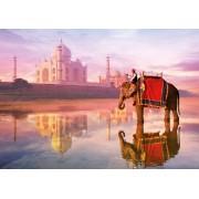 Puzzle Educa - Elephant at Taj Mahal, 1000 piese, include lipici puzzle (16756)