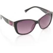 Glares by Titan Round Sunglasses(Violet)