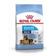 ROYAL CANIN MAXI STARTER - nagy testű kölyök és vemhes kutya száraz táp 4 kg