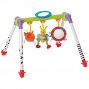 Taf Toys Take-To-Play Baby Gym 11605