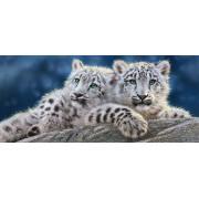 Selecta Snow Leopard Cubs - Puzzel (600)