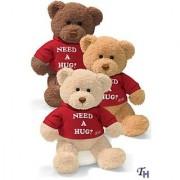 Gund 112629 Toy-Plush Message Bear & Need A Hug 12 in.