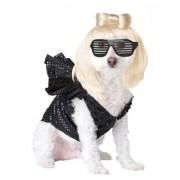 Pup-A-Razzi Pop Sensation Disfraz para Perro, Color Negro, Classic, Negro, M