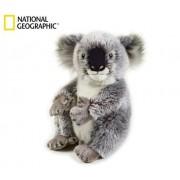 Koala - pluszak na rękę