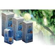 Ulei esential de eucalipt 10 ml - uz extern