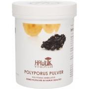 Hawlik Polyporus Pulver - 100 g