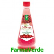 Sirop de Macese 520 ml SteauaDivina