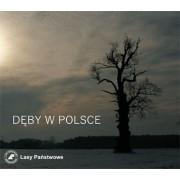 Dęby w Polsce - DVD