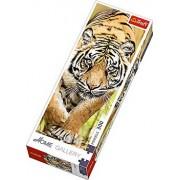Puzzle panoramic Tigru, 300 piese