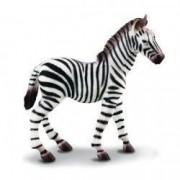 Figurina pui de Zebra M Collecta
