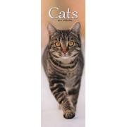 Tuinland SL Kalender 2021 Cats