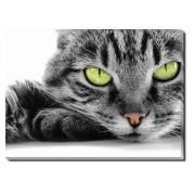 Tablou Canvas Pisicuta cu Ochi Verzi