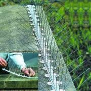 Țepi din oțel împotriva păsărilor (l. - 34 cm.) - 1 metru