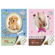 Carte de colorat A4 28 file color Pretty Pets V Herlitz