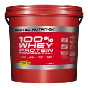 100% Whey Protein Professional (5 kg)