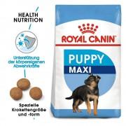 Royal Canin Size 2x15kg Maxi Junior Royal Canin - valpfoder