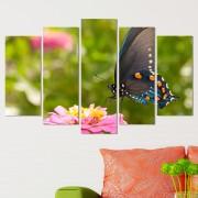 Декоративeн панел за стена с пъстроцветна пеперуда Vivid Home