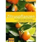 Hans-Peter Maier - Zitruspflanzen: Schritt für Schritt zum eigenen Zitrusparadies. GU Pflanzenpraxis (GU PraxisRatgeber Garten) - Preis vom 18.10.2020 04:52:00 h