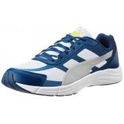 Puma Men's Expedite White, Poseidon and Puma Silver Mesh Running Shoes - 10UK/India (44.5EU)