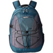 Samsonite Albi 30 L Laptop Backpack(Blue, Black, Grey)